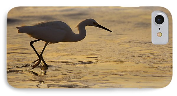 March Of The Egret IPhone Case by Mike  Dawson