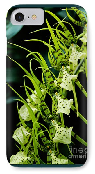 IPhone Case featuring the photograph Marching Orchids by Eva Kaufman
