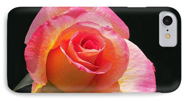 Mardi Gras Floribunda Rose Phone Case by Rona Black