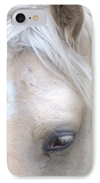 Mare2 IPhone Case by Michael Dohnalek