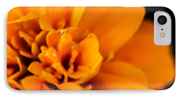 Marigold's Visitor IPhone Case