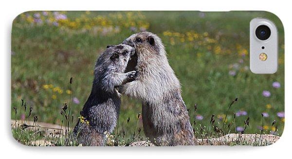 Marmots In Glacier Np IPhone Case