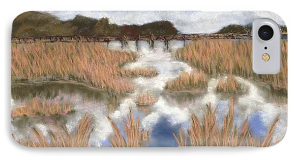 Marsh Reflections IPhone Case