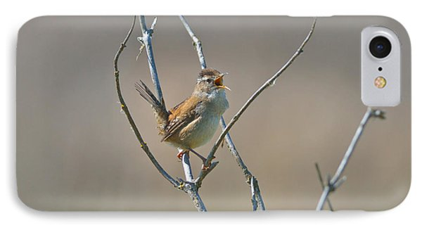 Marsh Wren IPhone Case