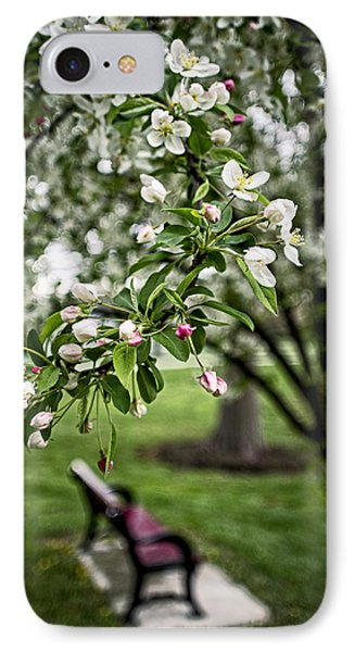 Mary's Tree And Bench IPhone Case by Wayne Meyer