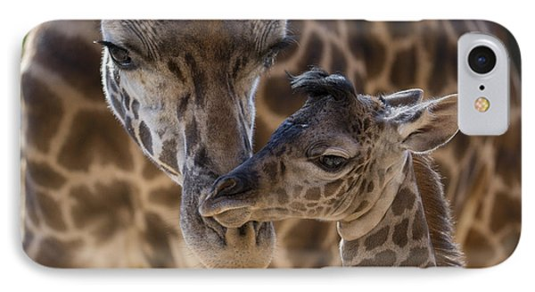 Masai Giraffe And Calf IPhone Case