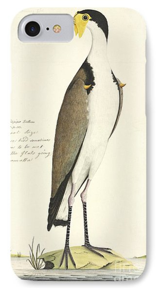Masked Lapwing, 18th Century IPhone 7 Case by Natural History Museum, London