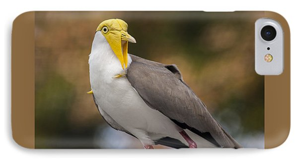 Masked Lapwing IPhone 7 Case by Carolyn Marshall