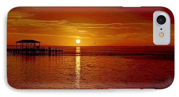 IPhone Case featuring the photograph Mass Migration Of Birds With Colorful Clouds At Sunrise On Santa Rosa Sound by Jeff at JSJ Photography