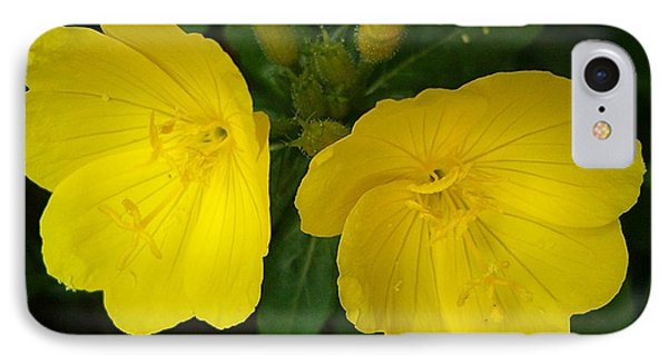 IPhone Case featuring the photograph Matching Pair by Sara  Raber