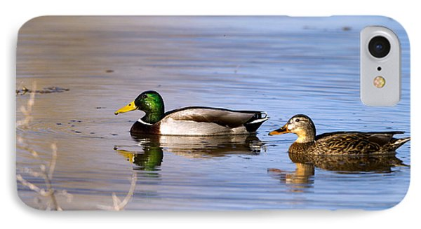 Mated Mallards IPhone Case by Martha Marks
