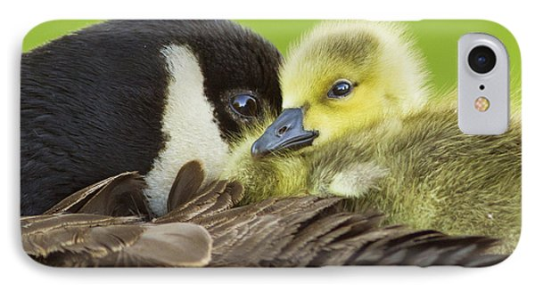 Maternal Love IPhone Case by Mircea Costina Photography