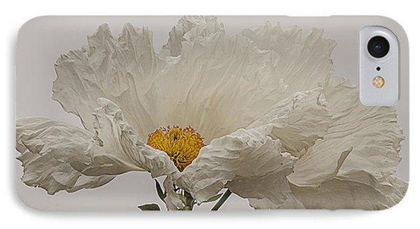 Matilija Poppy White On White IPhone Case