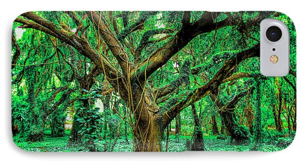 Maui Tree IPhone Case by Robert  Aycock