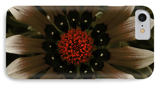 IPhone Case featuring the photograph May May  by Janice Westerberg