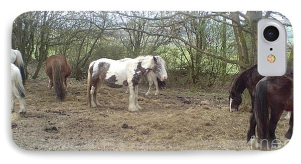 May Hill Ponies 1 IPhone Case by John Williams