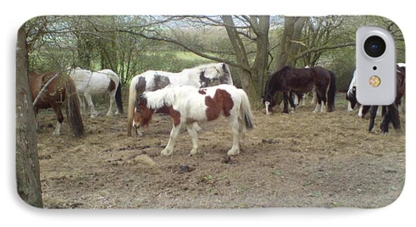May Hill Ponies 2 IPhone Case by John Williams