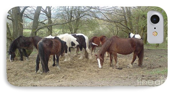 May Hill Ponies 3 IPhone Case by John Williams