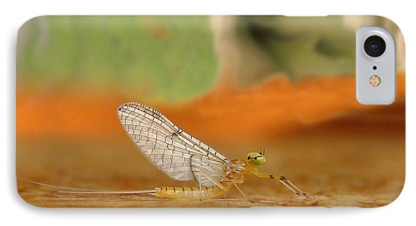 Mayfly Art Phone Case by Thomas Young