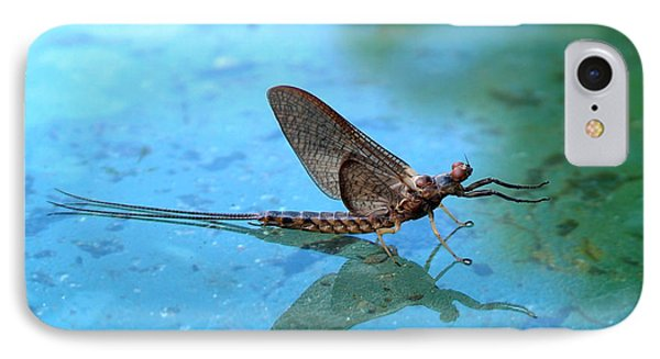 Mayfly Reflected Phone Case by Thomas Young