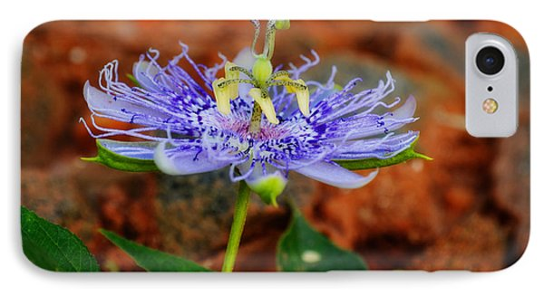 Maypop Flower Phone Case by Adam LeCroy