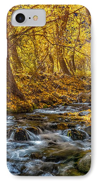 Mcgee Creek IPhone Case by Tassanee Angiolillo