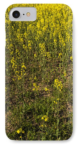 Meadow Of Rapes Phone Case by Svetlana Sewell
