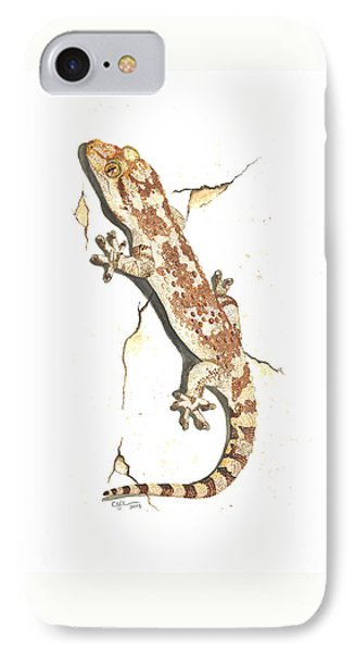 Mediterranean House Gecko IPhone Case by Cindy Hitchcock