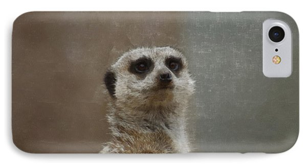 Meerkat 5 IPhone 7 Case by Ernie Echols