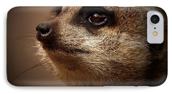Meerkat iPhone 7 Case - Meerkat 6 by Ernie Echols