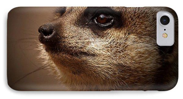 Meerkat 6 IPhone Case by Ernie Echols
