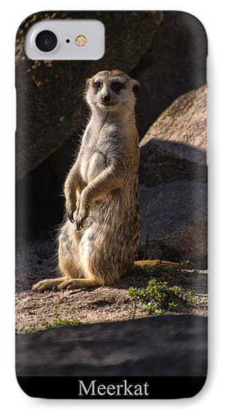 Meerkat IPhone Case by Chris Flees
