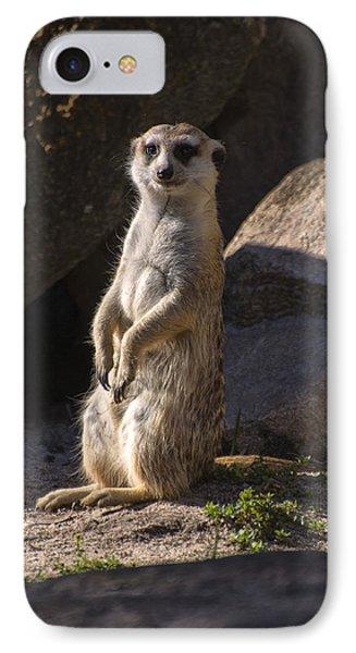 Meerkat Looking Forward IPhone Case by Chris Flees