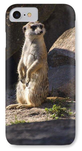 Meerkat Looking Left IPhone Case by Chris Flees
