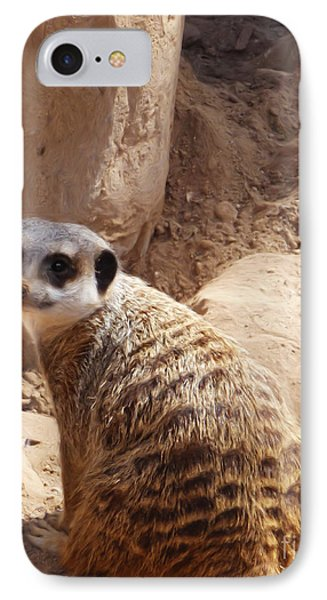 Meerkat Portrait IPhone Case by Methune Hively