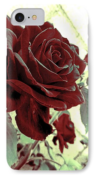 Melancholy Rose IPhone Case by Shawna Rowe