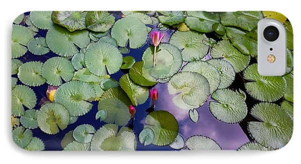 Memories Of Monet IPhone Case by Barbara Chichester