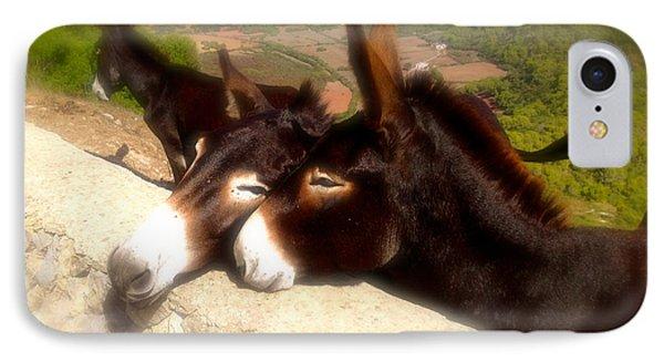 Menorcan Donkeys IPhone Case by John Colley