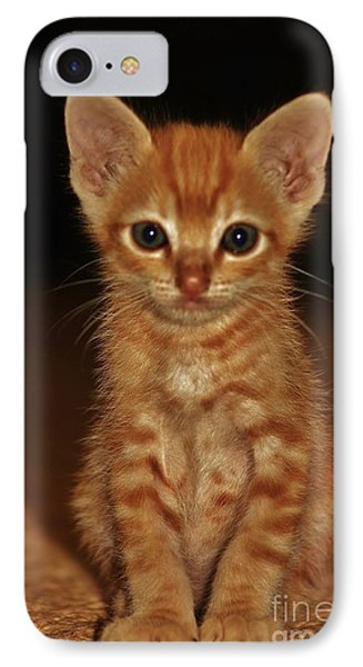 IPhone Case featuring the photograph Meow by Craig Wood