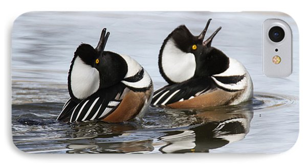 Merganser Display IPhone Case