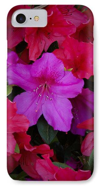 Merging Azaleas 2 IPhone Case by Penny Lisowski