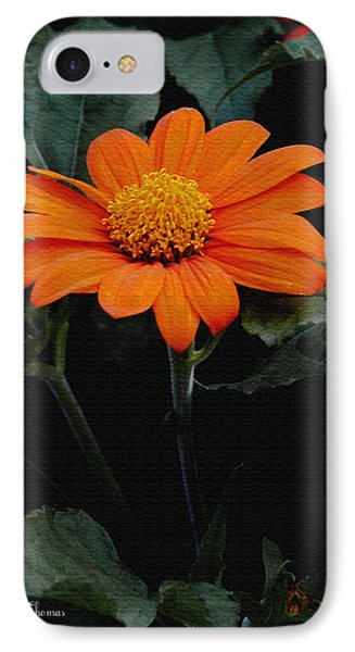 IPhone Case featuring the photograph Mexican Sunflower by James C Thomas
