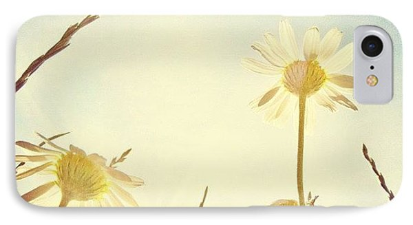 #mgmarts #daisy #all_shots #dreamy IPhone Case by Marianna Mills
