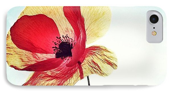 #mgmarts #poppy #nature #red #hungary IPhone Case by Marianna Mills