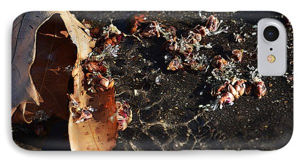 Microcosmic IPhone Case by Rhys Arithson