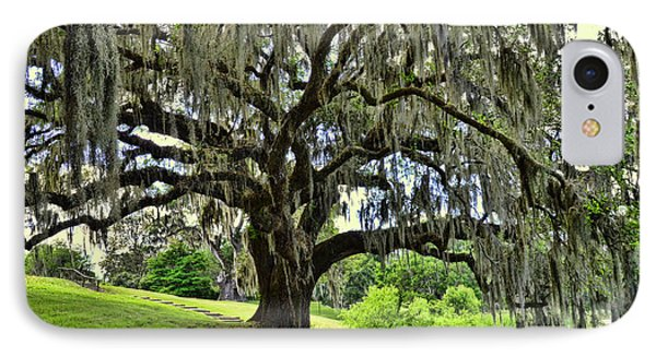 Middleton Place Oak  IPhone Case by Allen Beatty