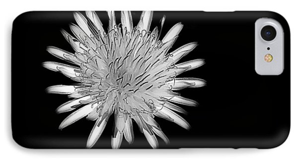 IPhone Case featuring the photograph Midnight Dandelion by Ludwig Keck