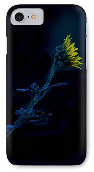 IPhone Case featuring the photograph Midnight Sunflower by Darryl Dalton