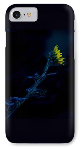 Midnight Sunflower Phone Case by Darryl Dalton