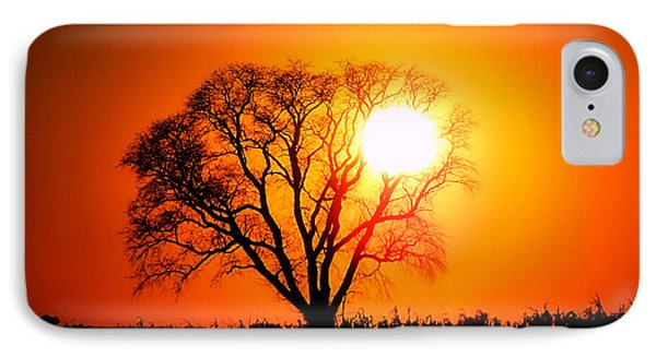 Mighty Oak Sunset IPhone Case by Sharon Woerner
